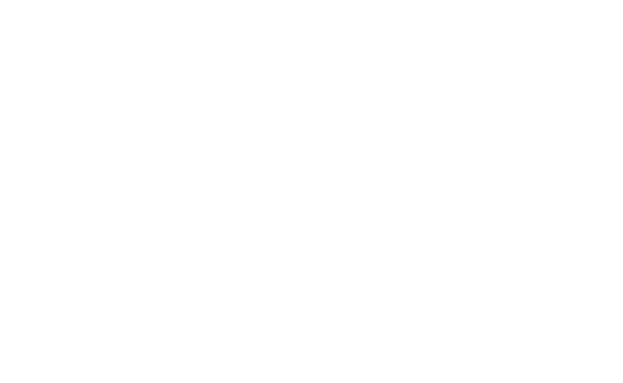 Greenmap international project UN